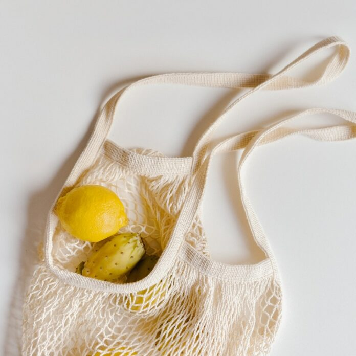 reduce plastic grocery shopping